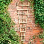 Softwood Traditional Fan Trellis